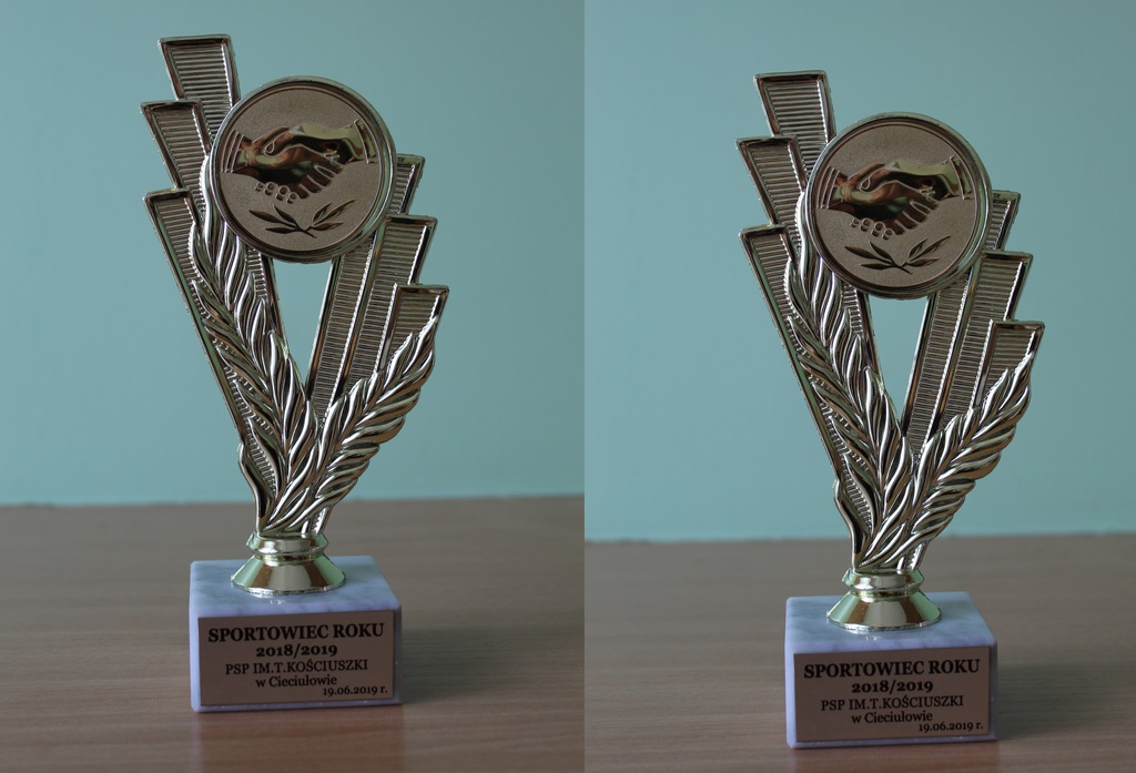 Puchary Sportowiec Roku.jpeg