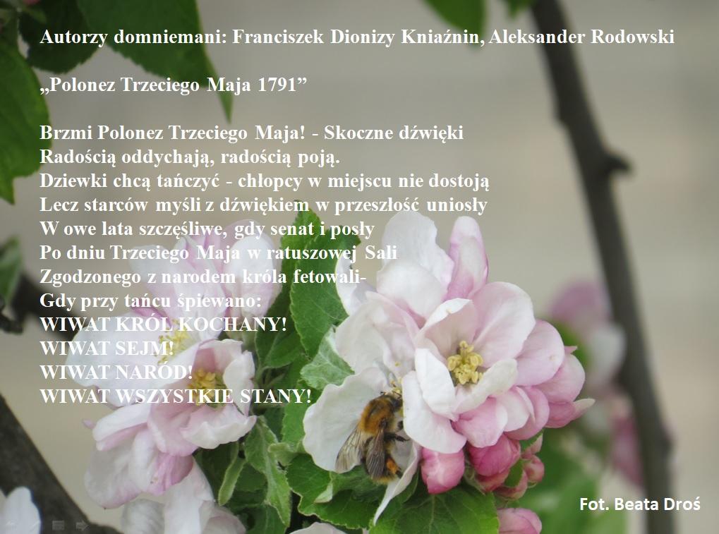 Polonez Trzeciego Maja 1791.jpeg