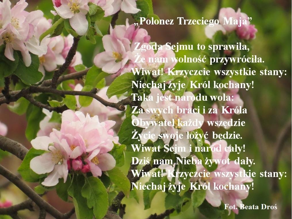 Polonez Trzeciego Maja Droś jpg.jpeg