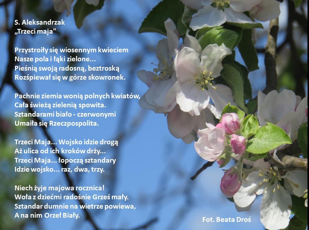 Wiersz S Aleksandrzaka Trzeci maja - Droś.jpeg