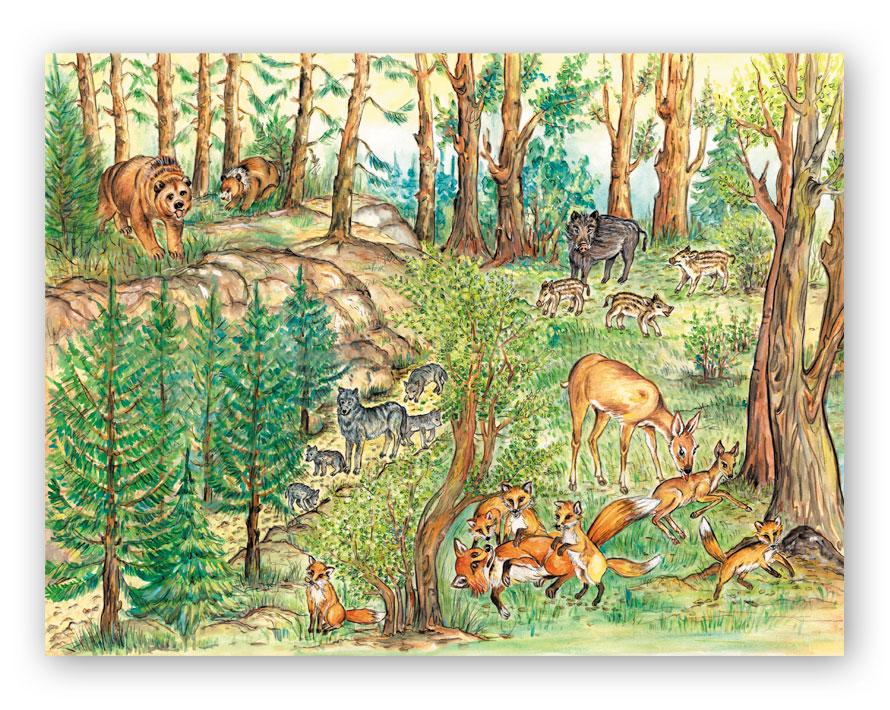 las i jego mieszkańcy.jpeg