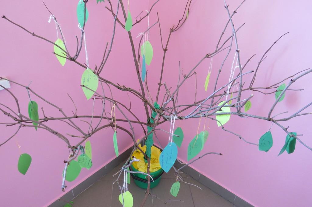 Drzewo - finał.jpeg