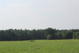 """Galeria """"Szlakiem bocianich gniazd"""" 22.06.2021 r."""