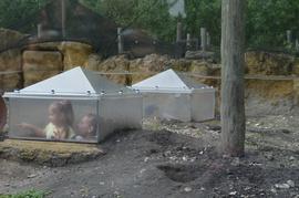 Galeria Przedszkolaki w opolskim ZOO