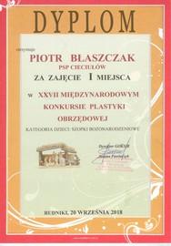 Piotr Plastyka.jpeg
